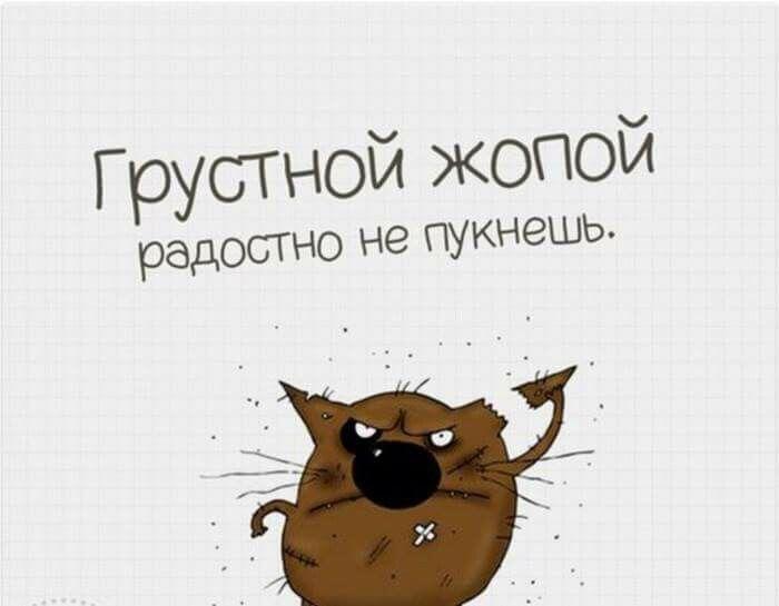 Истинная правда))