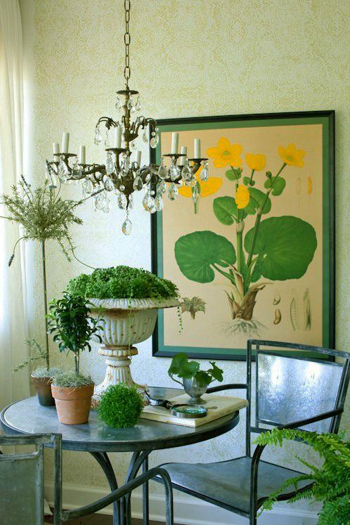 Ботанические иллюстрации смотрятся органично в окружении цветов и вазонов, так сказать в «родной среде». Посмотрите как прекрасен этот интерьер, кажется, что находишься в ботаническом саду #рамка #багетнаямастерская #декорстен #фоторамка #багетнаямастерскаяВиртуоз