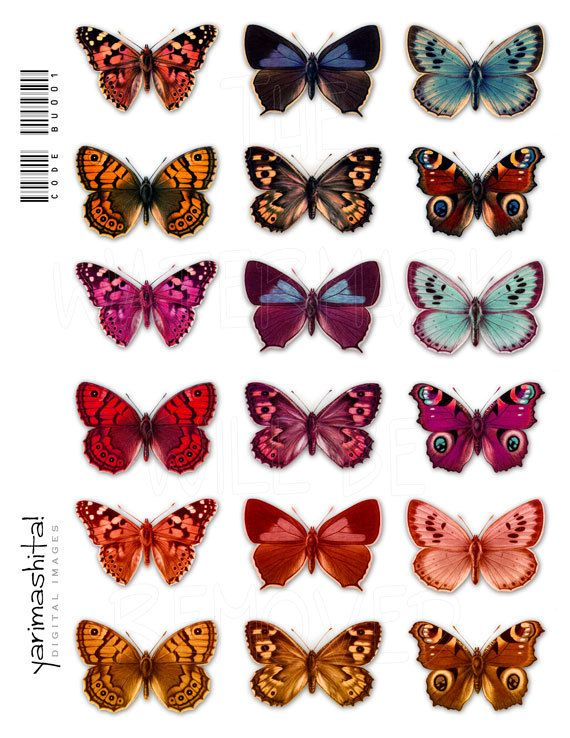 """Vintage butterfly images Colorful recolored Digital collage sheets Scrapbooking Decoupage Old book scan Download printable 8.5"""" x 11"""" /bu001..."""