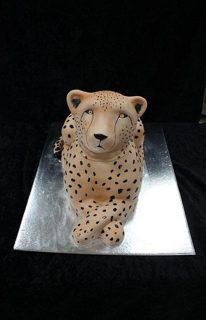 cheetah cake by The House of Cakes Dubai, via Flickr