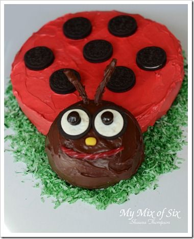 Lady Bug Birthday Cake.. I need someone to try and make this for