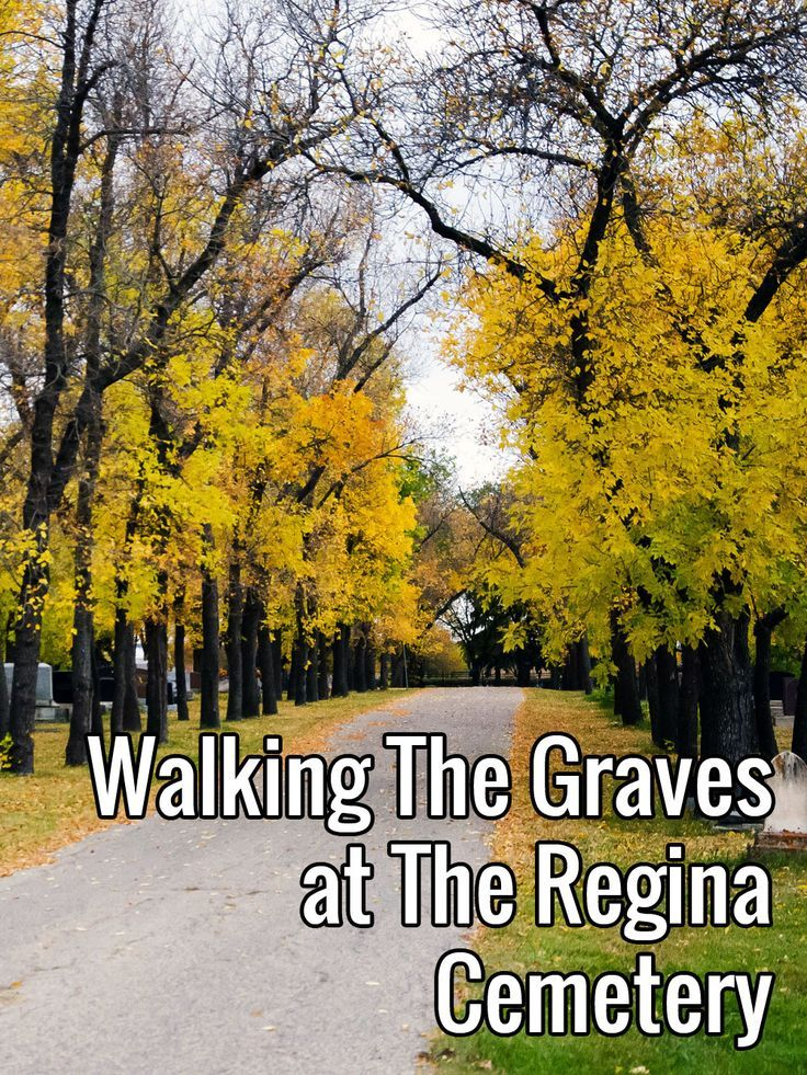 Walking The Graves at The Regina Cemetery · Kenton de Jong Travel - Among the tombstones of the Regina Cemetery are little blue and white flags. In 1993 the Regina Ethnic Pioneers Cemetery Walking Tour put together...