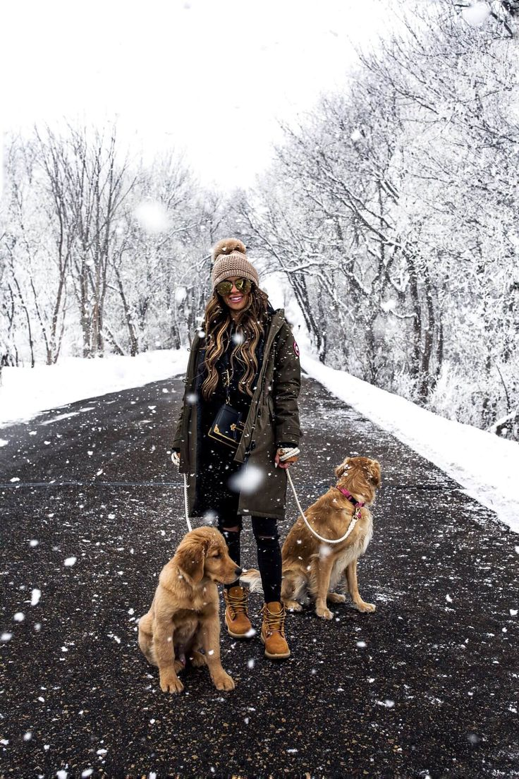 fashion blogger mia mia mine wearing a canada goose parka and timberland boots with golden retrievers