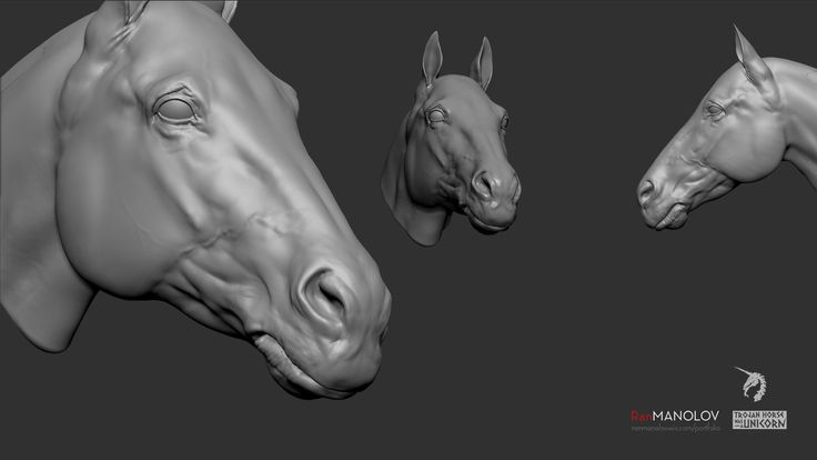 ArtStation - Horse's head., Ran Manolov