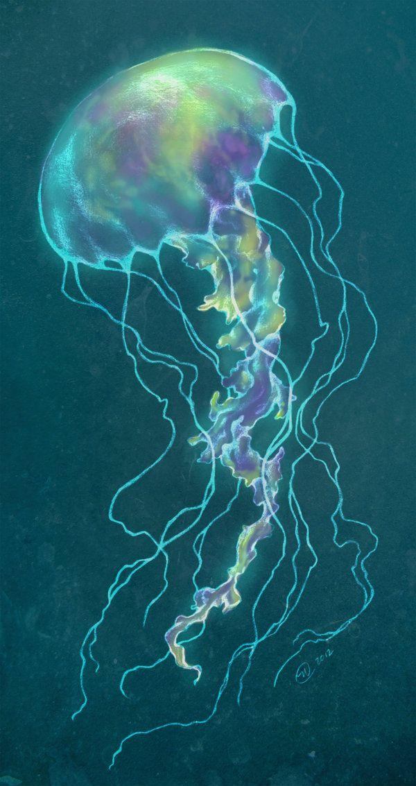 Cool Jellyfish | Glow Bright Jellyfish by GoldenDruid on deviantART