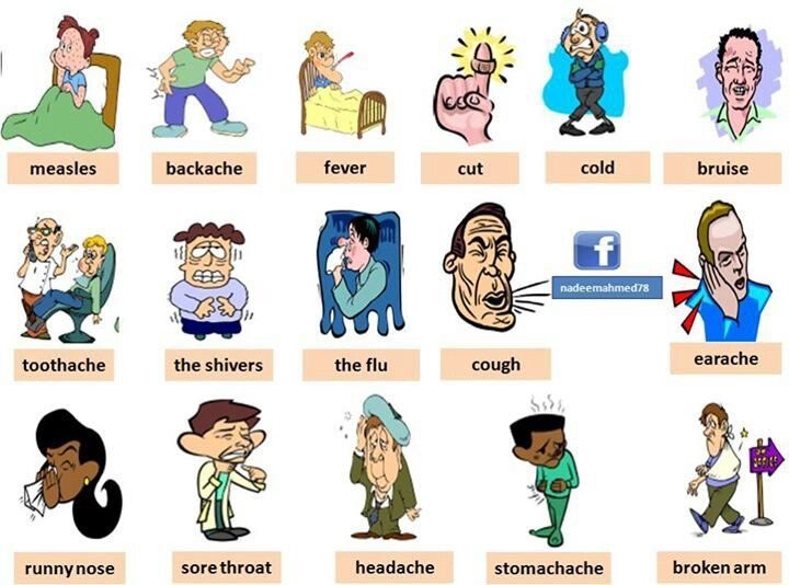 Level 3 4 Lcb Vocabulary Illnesses And Parts Of The Body