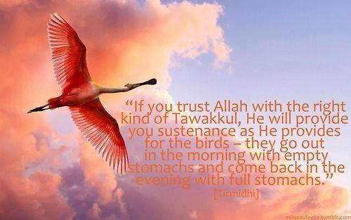 True Tawakkul (Prophet Muhammad ﷺ Quote)