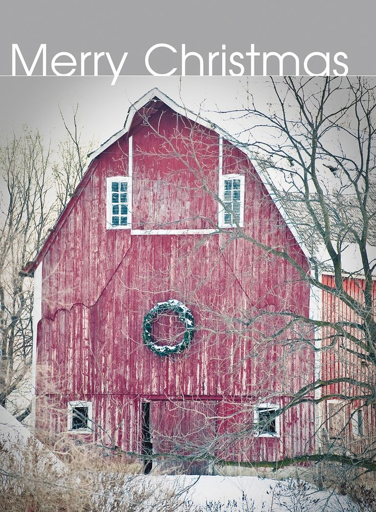 """""""Untitled"""" by Iowa Farm Bureau on Flickr - Winter settled into northern Iowa last week, and a barn in Winnebago County is decorated perfectly for the holiday season.  This photograph was taken on December 12, 2009."""