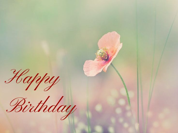 25+ Best Ideas About Friend Birthday Meme On Pinterest