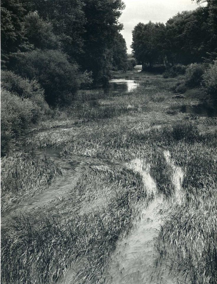 Paul Strand: Art Landscape Photography, Strands, Posts, B W Photography, Paul Strand Photography, Strand Paul, Inbetween Photography, Drawing