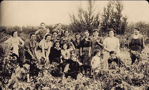 Familia MUGA