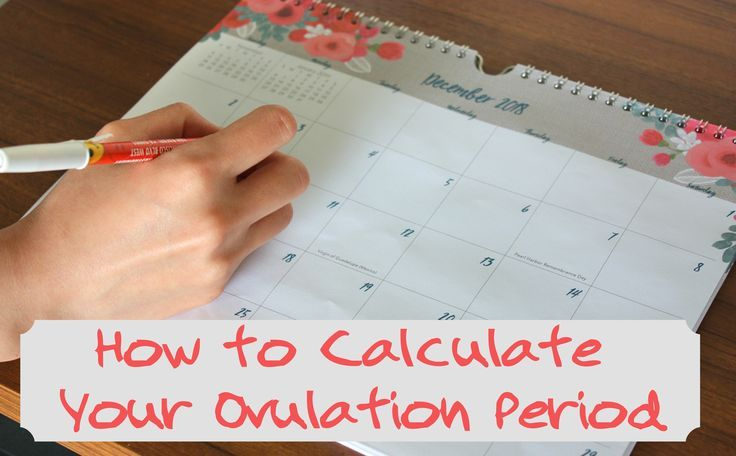 How to calculate your ovulation period using your menstrual cycle – CFS NPT – …   – Pregnancy Calculator