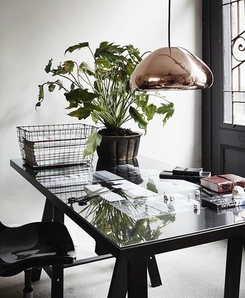 plants on an office desk