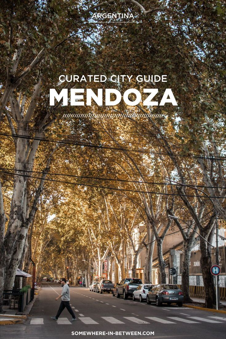 Welcome To Wine Lover Paradise Our Mendoza Travel Guide Covers