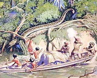 Giant Anacondas