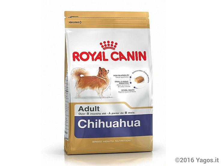 Alimento per cani Chihuahua Adult ROYAL CANIN
