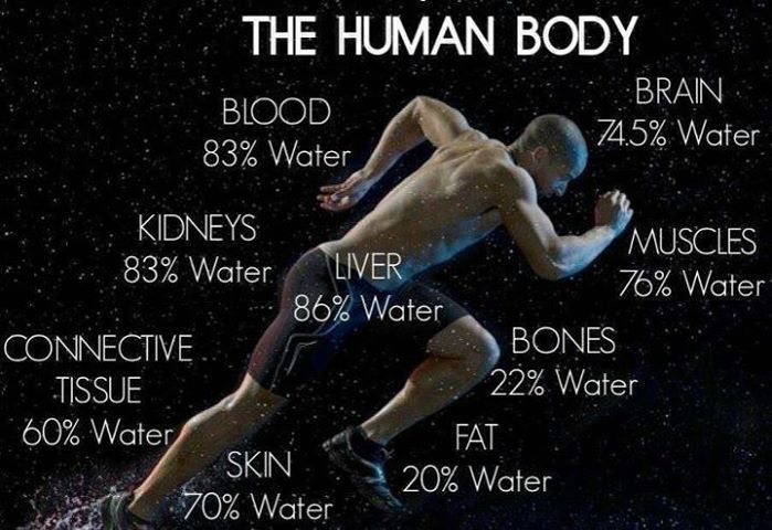The human body relies on healthy amounts of water: