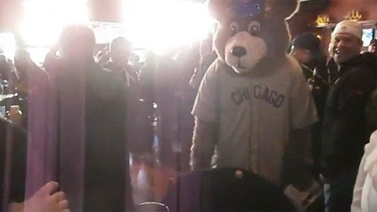 Video: Cubs Mascot Punches Guy at Wrigleyville Bar - A Funny Video on KillSomeTime