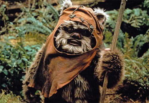 dog fancy dress ewok - Google Search