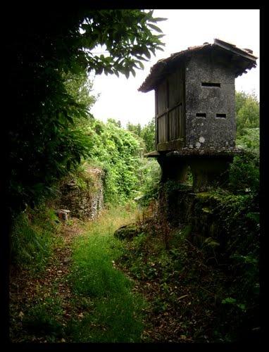 Horreo abandonado Palas de Rei Lugo