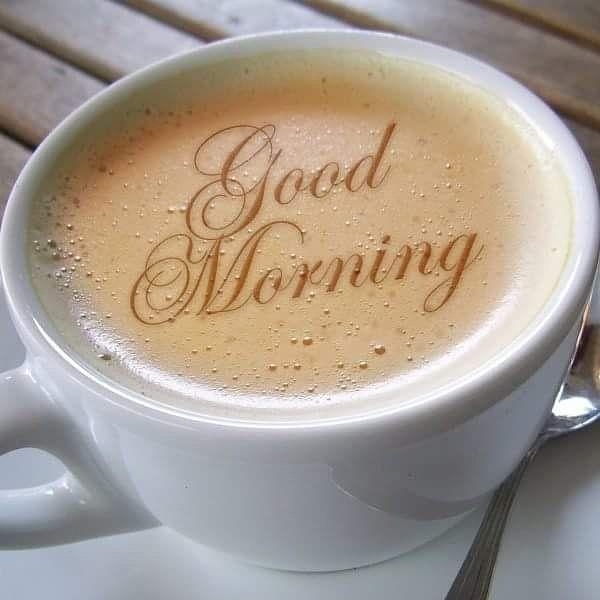 Have a nice day guys.... #niceday#morning#motivation#trainingday#dayoff#follow4follow#followme#hardwork#fitness#