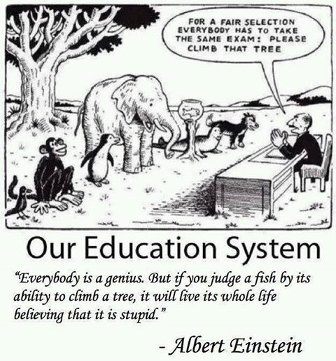 If you judge a fish by its ability to climb a tree - it will live its whole life believing it is stupid