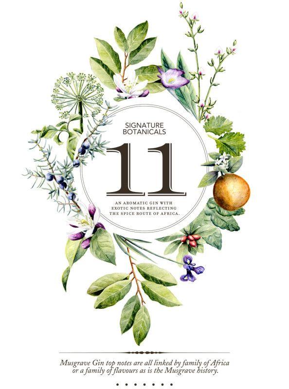 Signature Botanicals designed by Brand Tree