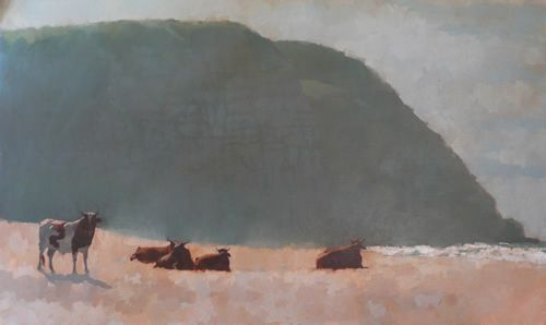 Nguni Cattle at Coffe Bay by Nora Newton See: http://noranewton.com/pages/gallery.php