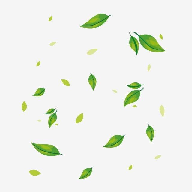 Leaves Png Leaves Transparent Clipart Free Download Euclidean Vector Leaf Wreath Flower Leaf Decoration Box Green Leaf Background Plant Images Leaves