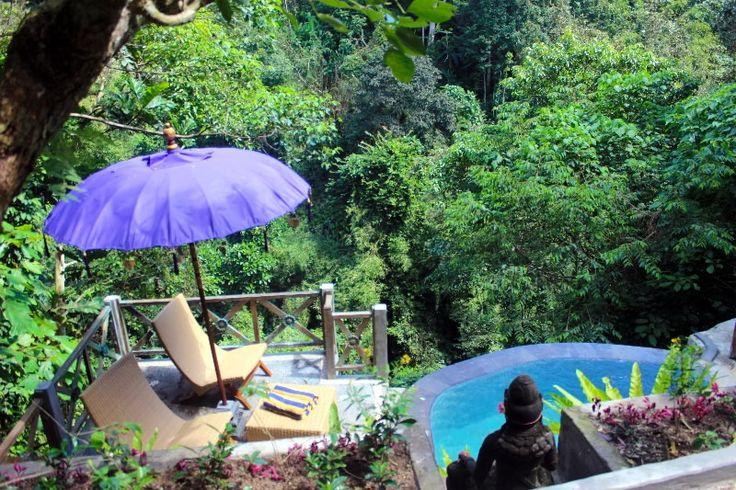 Villa Awang Luwih | 1 bedroom | One of Villa Awang Awang Collection | Melayang, Ubud, Bali #infinitypool #ubud #bali #honeymoon