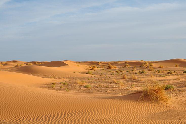 Zagora Desert Travel to Morocco