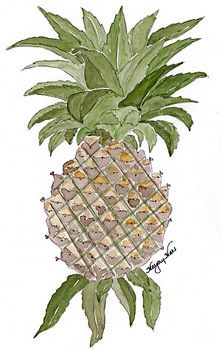 Southern Hospitality......Ship captains would sail into Charleston, South Carolina, and place a pineapple ontheir wrought iron fence, which meant they were home and welcomed everyone to come in, visit, and see their wares from their travels. The pineapple became a welcome symbol of hospitality.