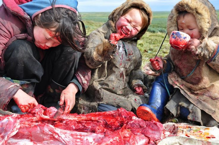 A family of Siberian aboriginals sharing a meal of raw deer meat. - http://i.imgur.com/4R6QisK.jpg