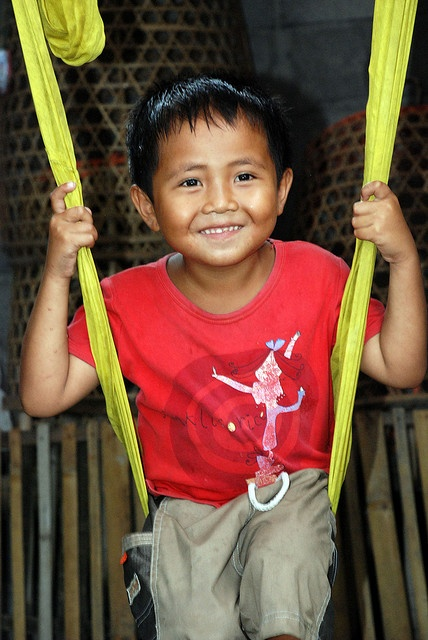 Boy on homemade swing