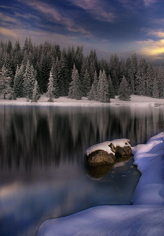 ✮ Sight of Silence: Winter Scene, Wonder Places, Winter Wonderland, Lakes, Photo, Christmas Trees, Winter Beautiful, Alex O'Loughlin