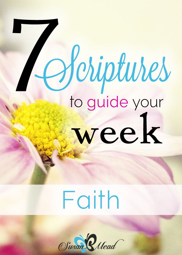 Did you know the Bible is our Basic Instructions Before Leaving Earth? 7 Scriptures on FAITH to guide your week.