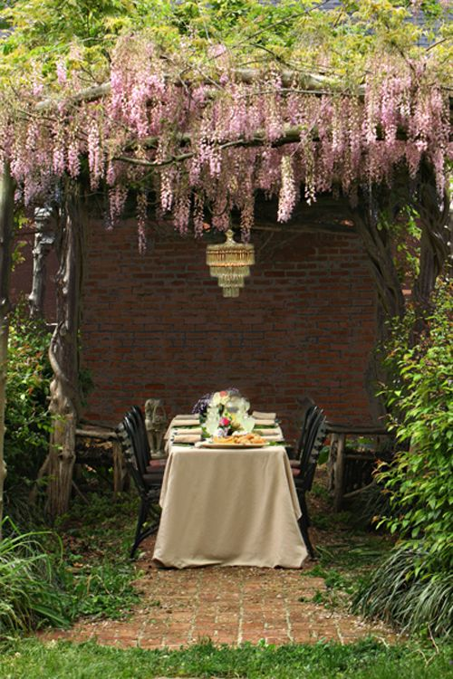 Arbors and WisteriaDining Area, Wedding Ideas, Outdoor, Back Yards, Dinner Parties, Wisteria, Hanging Flower, Gardens Parties, Backyards