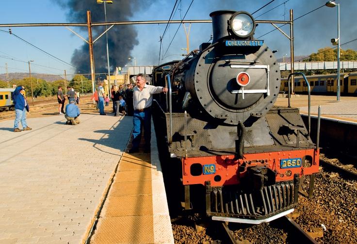 things to do in Gauteng