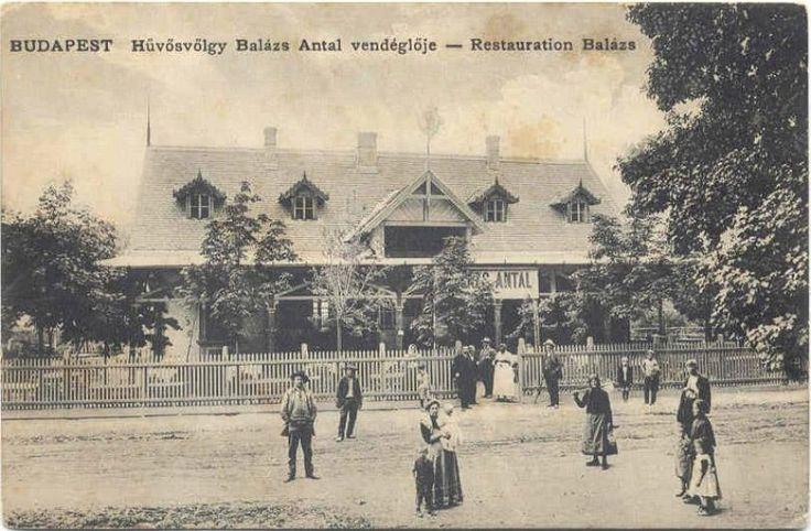 1900-as évek eleje, Hűvösvölgyi út, a Balázs vendéglő