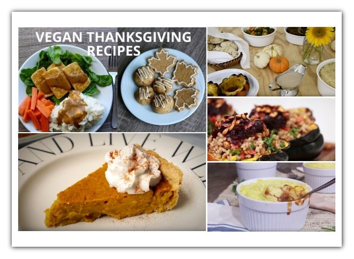 164 best food tips images on pinterest food stamps food tips vegan thanksgiving recipes videos ecogreenlove healthy vegan recipeshealthy foodvegan forumfinder Choice Image