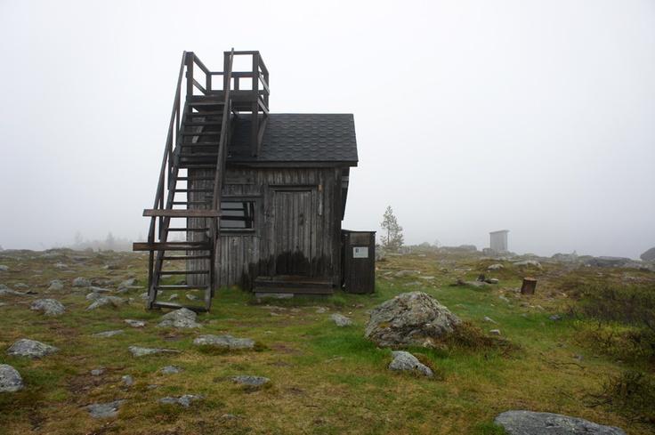 Otsamo fell in Inari, summer 2012.
