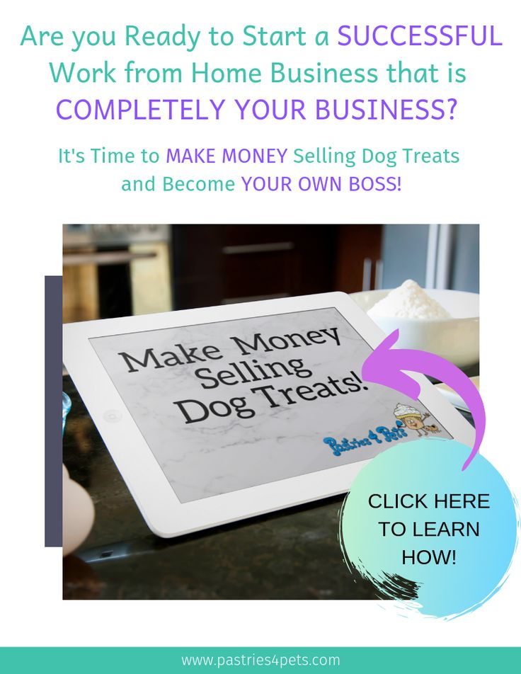 The best Dog Bakery Business Ideas start with a great
