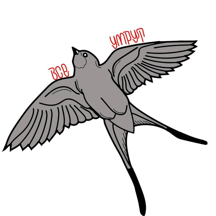 20 отметок «Нравится», 1 комментариев — AKUMA SENPAI (@akumasenpaiofficial) в Instagram: «#bird #sticker #stickers #art #всеумрут #наклейки»