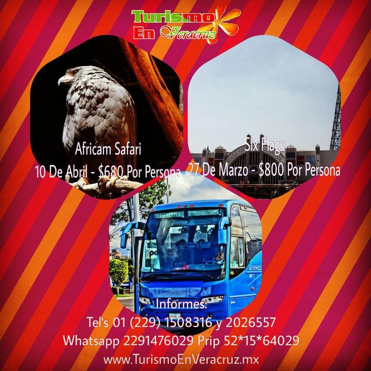 #Excursiones a #SixFlags y #AfricamSafari http://www.turismoenveracruz.mx/category/excursiones-2/ #Veracruz #Xalapa