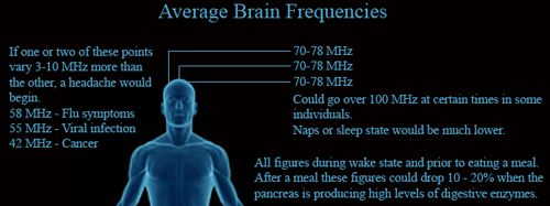 #Frequencies. Visit us at www.expansions.com/