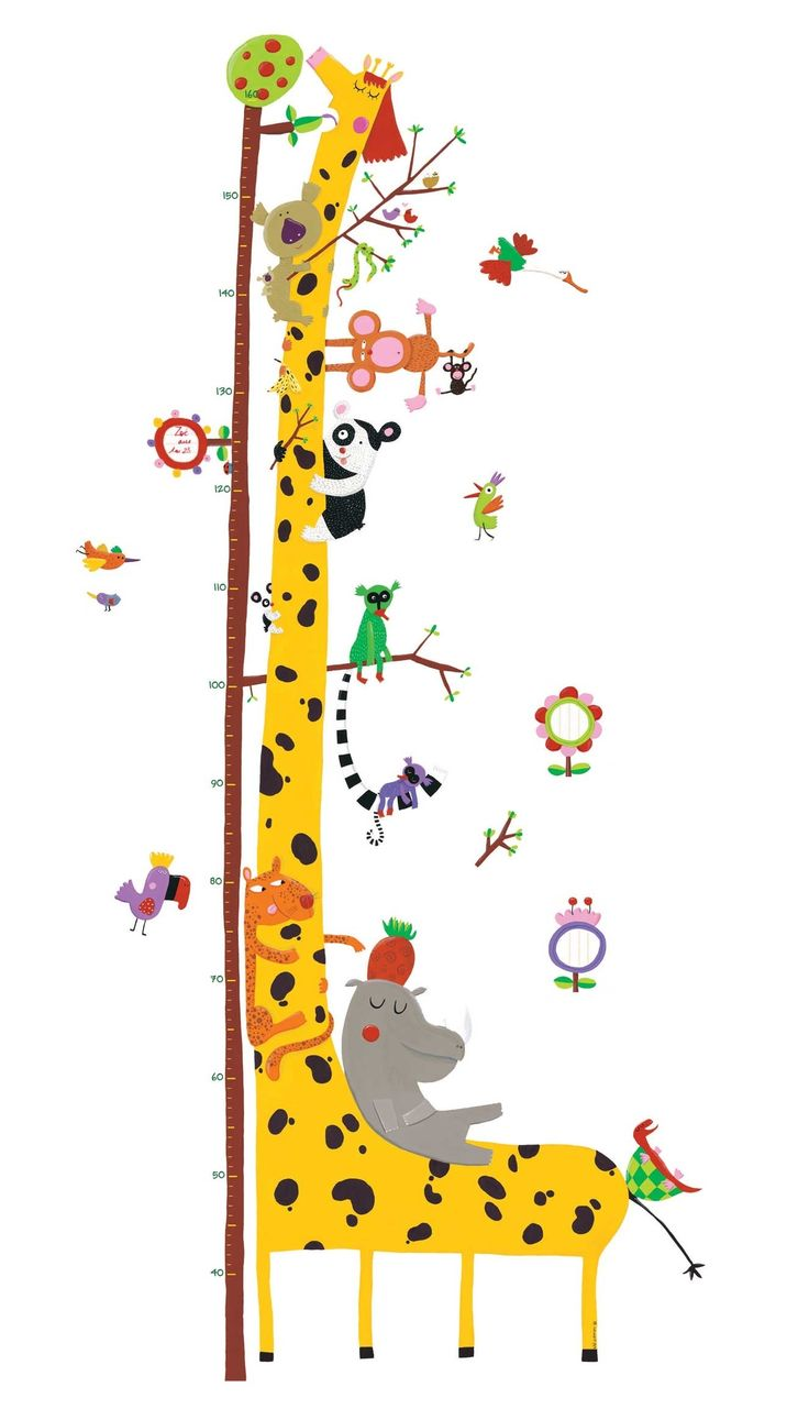 31 best wall stickers images on pinterest wall stickers vinyl image of wall stickers height chart friends of the amazon from djeco kids height chartkids bedroom