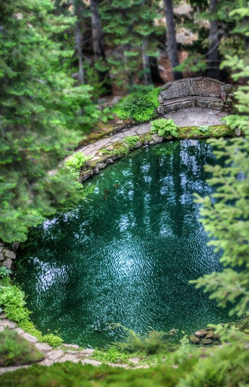 Emerald pool , Zion National Park,