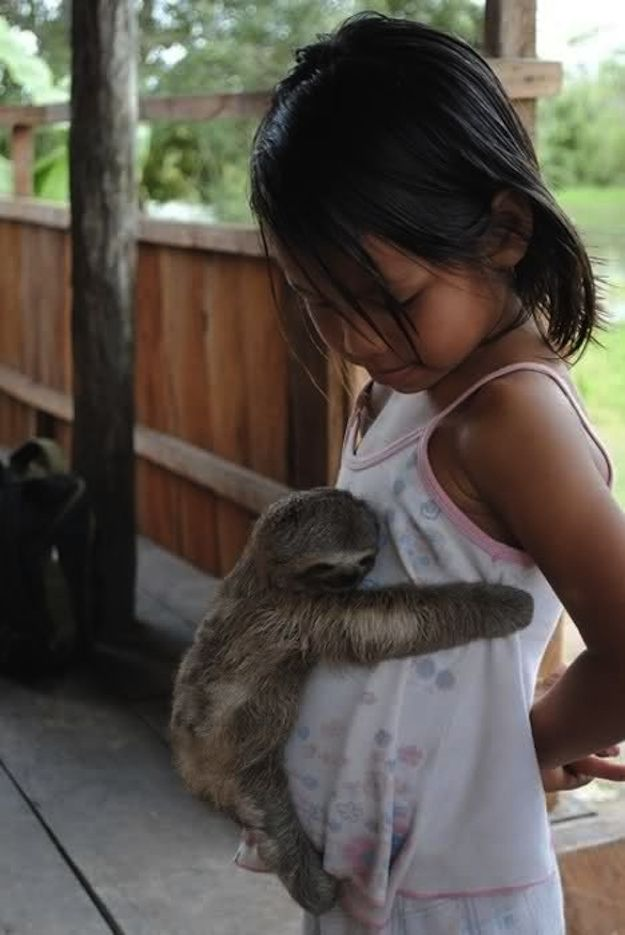 A sloth gave a hug. | 35 Magical Moments Captured With A Camera