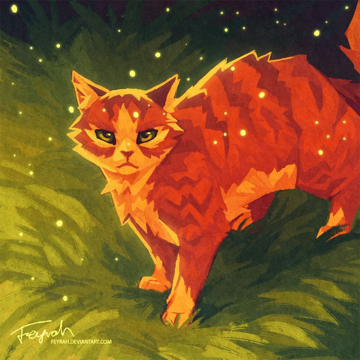 131 Best Images About Warriors ( Warrior Cats ) Fan Art On