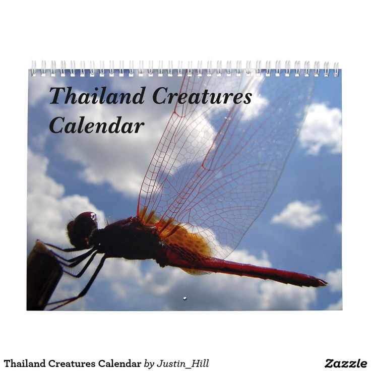Thailand Creatures Calendar :- This calendar features a selection of creatures photographed over a couple of years in the Kingdom of Thailand. 13 photographs for the price of 12...what a bargain! #chiangmai #thailand #omkoi #beetle #nature #wildlife #insect #bug #tropical #oriental #orient #thai #grasshopper #cricket #butterfly #lizard #calendar #photography #christmas #newyear #newyearsgifts